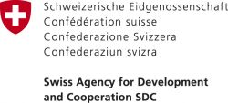 The South Cooperation Department